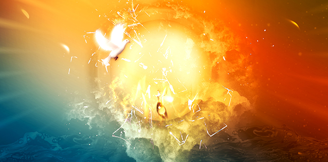 pentecost-bird